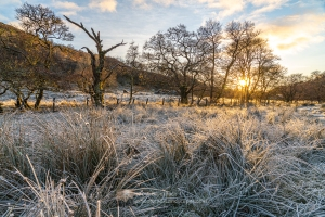 Glen Stockdale Afternoon Frost, Lochaber
